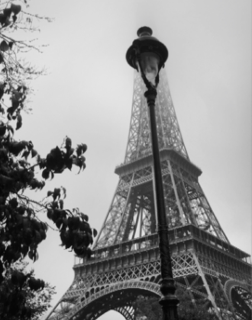 A vertical photo, looking up towards the Eiffel Tower.