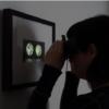 Twin scope viewer