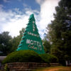 Motel sign as a tree