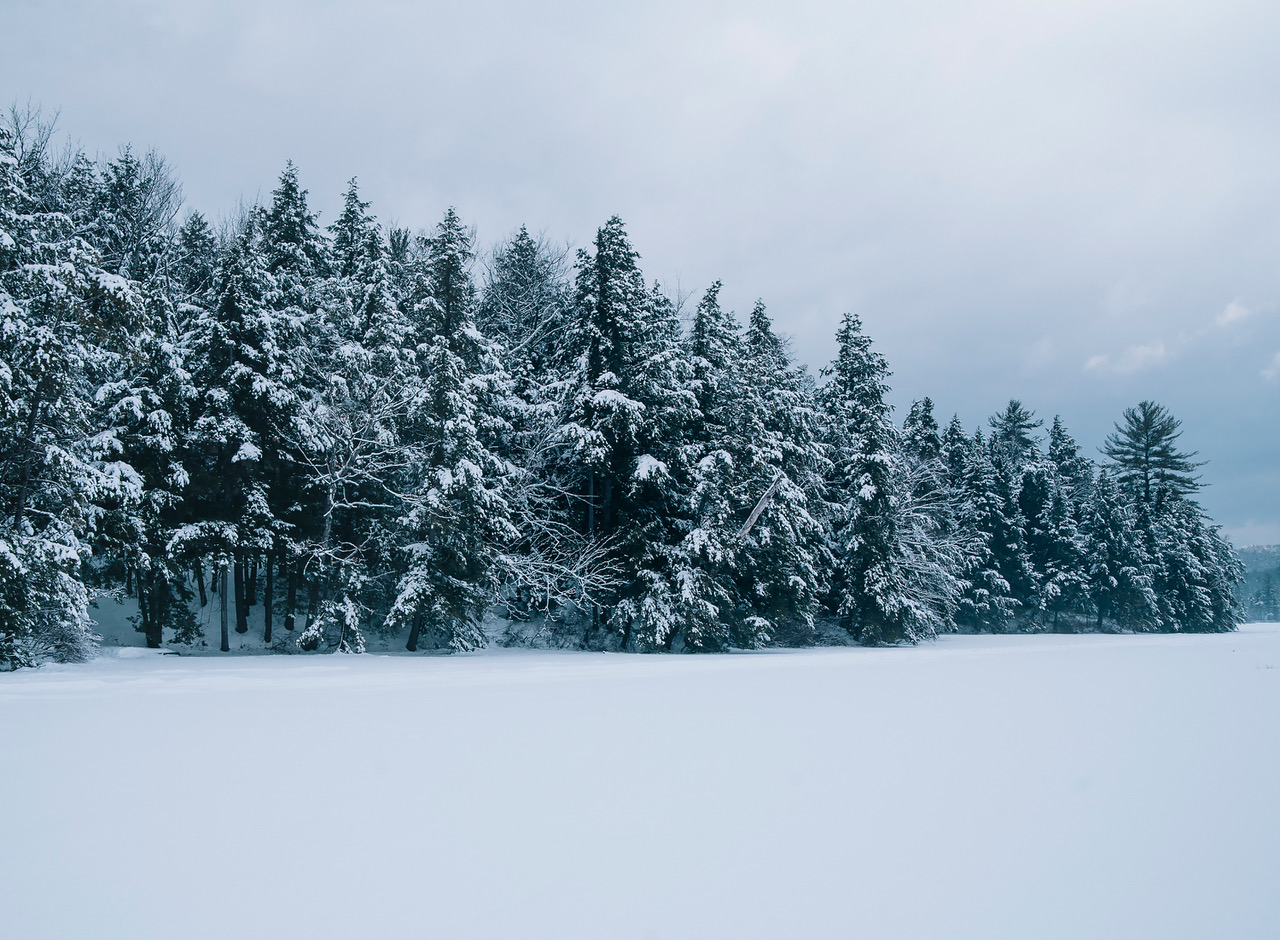 Lake blanketed with snow