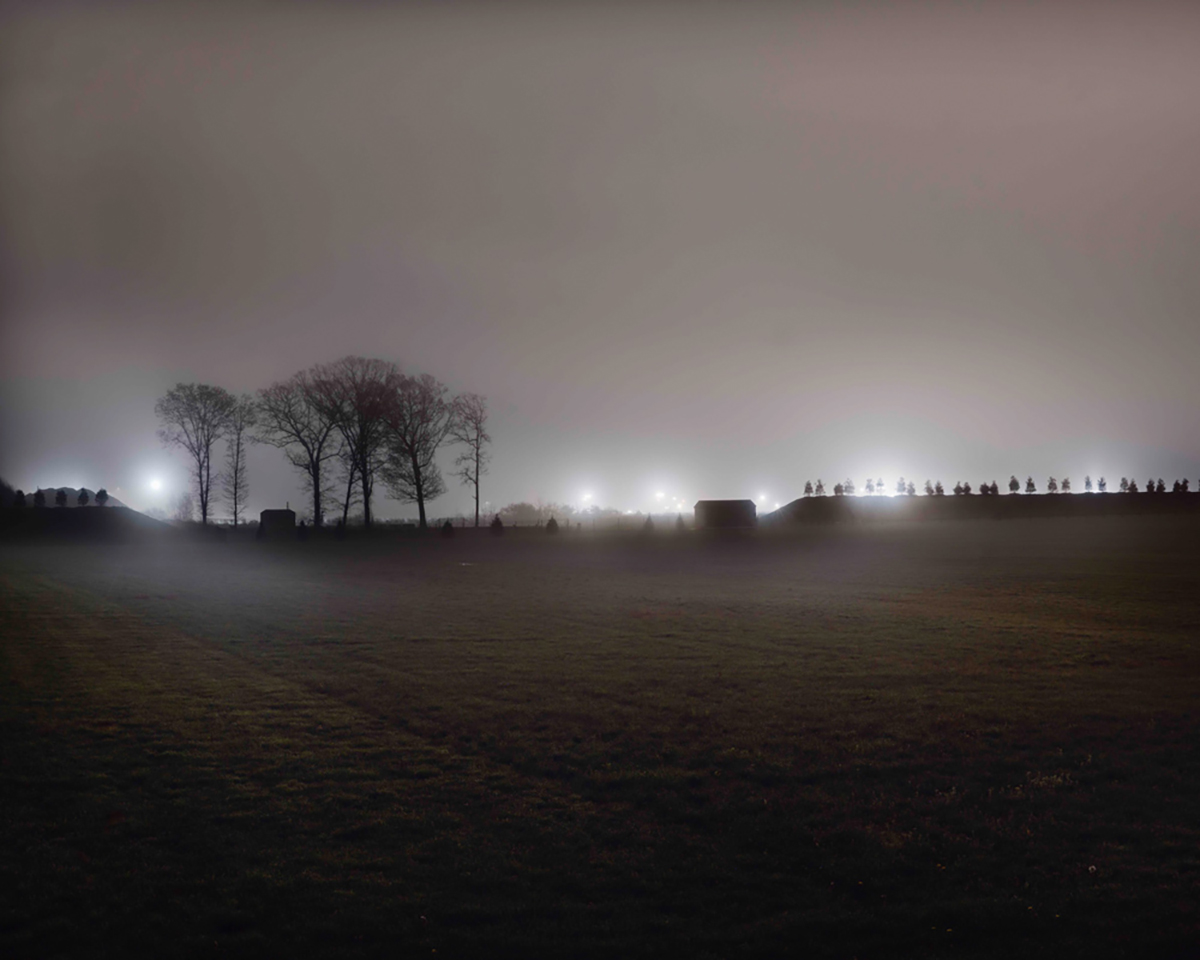 Foggy evening landscape of trees afar