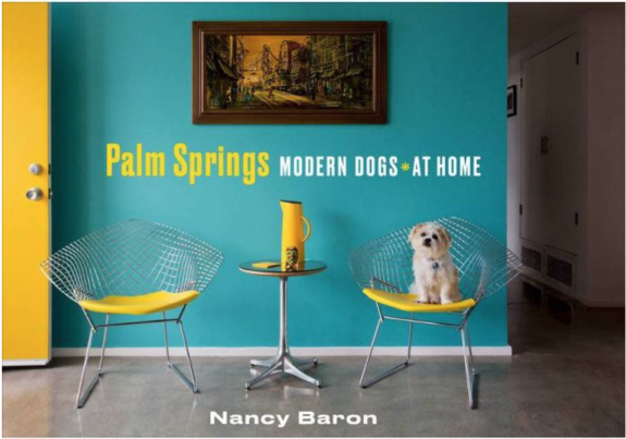 nb book cover