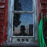 Reflection in Window Pane