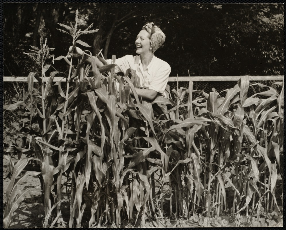 AG Archive- Gertrude Lawrence at summer home