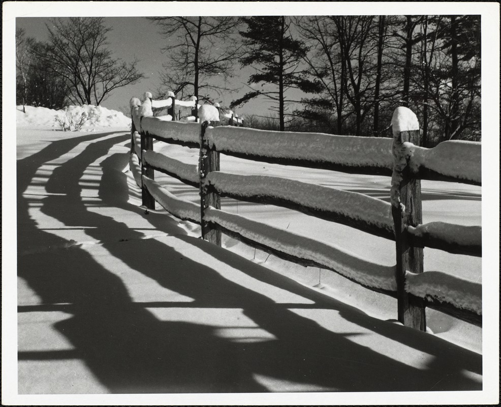 AG Archive - winter fence