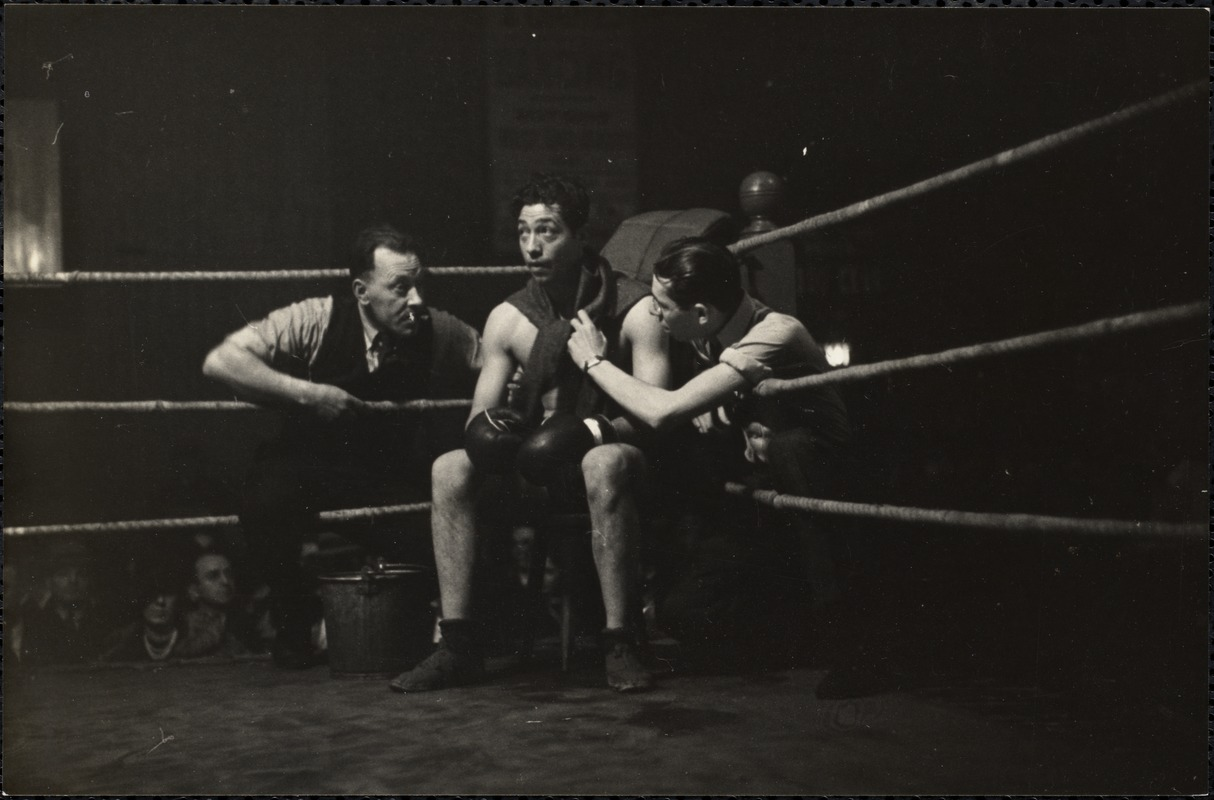 AG Archive- Boxer in the ring