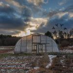 SG - greenhouse in field
