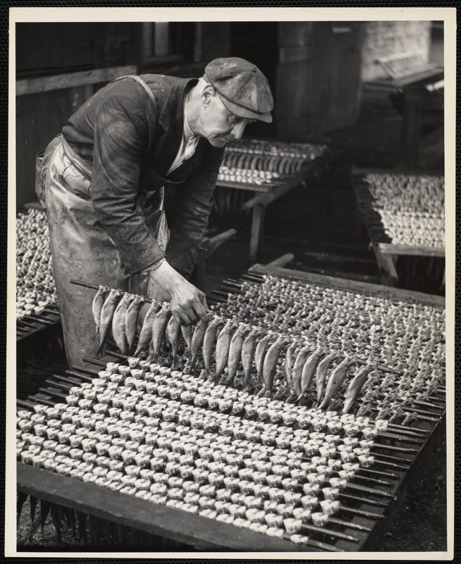 AG Archive- drying smoked herring