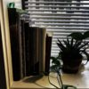 plant with books