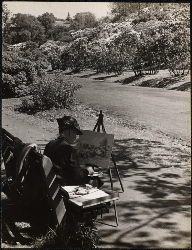 AG Archive- painting at the Arnold Arboretum