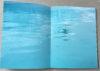 2 page spread