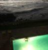 pool by ocean