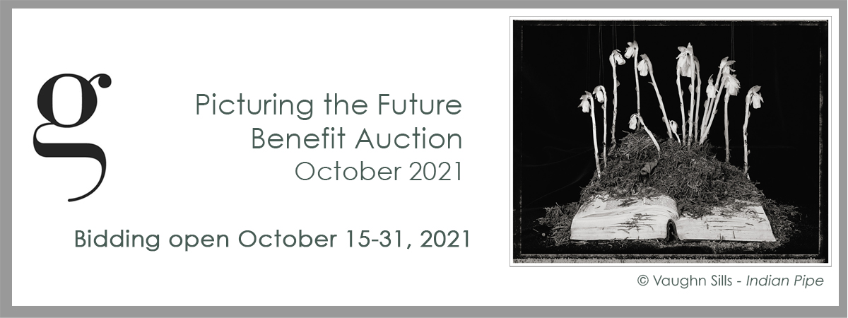 picturing the future auction